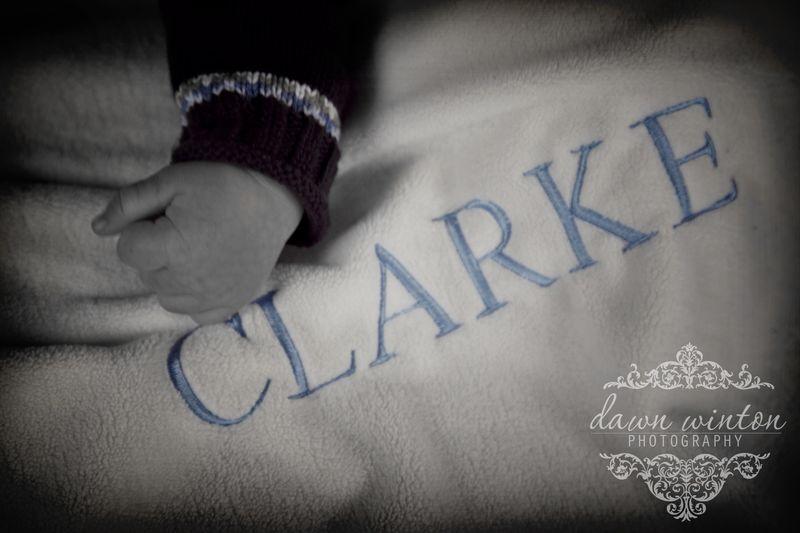 ClarkeNB024 copy